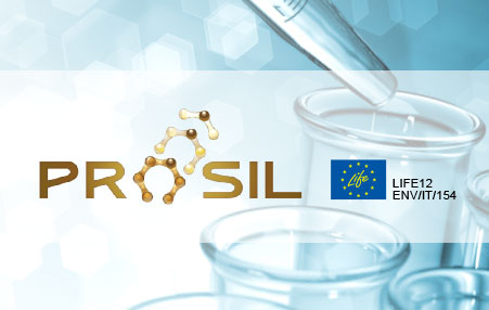PROSIL PROJECT FINAL WORKSHOP